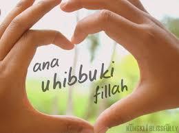 aku mencintai karena Allah